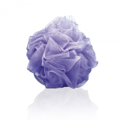 Kopalna goba vijolična