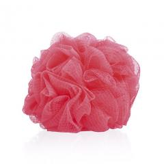 Kopalna goba koral