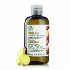 Šampon proti prhljaju ingver 60 ml