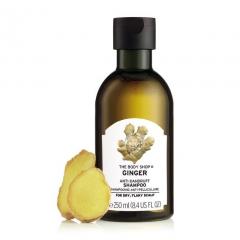 Šampon proti prhljaju ingver 250 ml